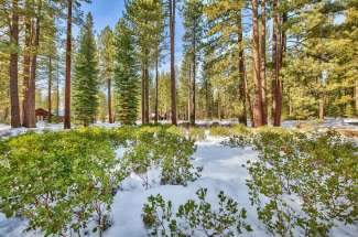11201 Comstock Drive – Pine Forest, Truckee