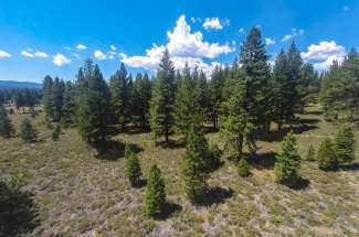 5 Acre Lot – The Woodlands at Tahoe
