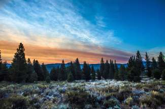 The Woodlands at Tahoe – Lot #4 – 21 Acres